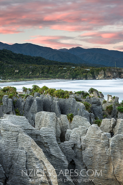 Pancake Rocks, limestone formations in Punakaiki at pastel sunrise, Paparoa National Park, Buller Region, West Coast, New Zealand, NZ