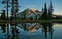 Mountain tarn reflecting Mount Rainier at dawn, Mount Rainier national park, Washington, USA , Plummer's Peak tarn