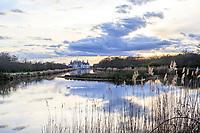 France, Loire-et-Cher (41), Chambord, château de Chambord, le Cosson canalisé à l'est du château le soir