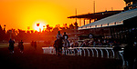 October 31, 2019: Scenes from morning preparations for the Breeders' Cup Championship weekend at Santa Anita Park in Arcadia, California on October 31, 2019. Carlos Calo/Eclipse Sportswire/Breeders' Cup/CSM