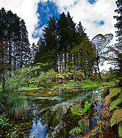 *New Zealand - North Island