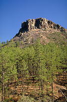 Thumb Butte, in the Prescott National Forest, is a rugged outcropping of granite which overlooks Prescott, AZ. Prescott Arizona USA Prescott National Forest.