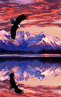Special effects image a Bald eagle in flight above clouds with mountain peaks in the background. Alaska.