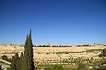 Israel, Jerusalem, a view of Kidron valley and Temple Mount from the Mount of Olives