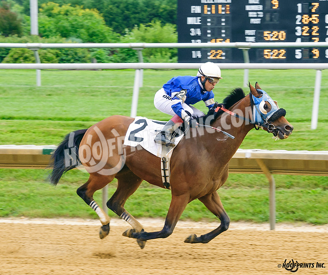 Obsess winning at Delaware Park on 7/2/16