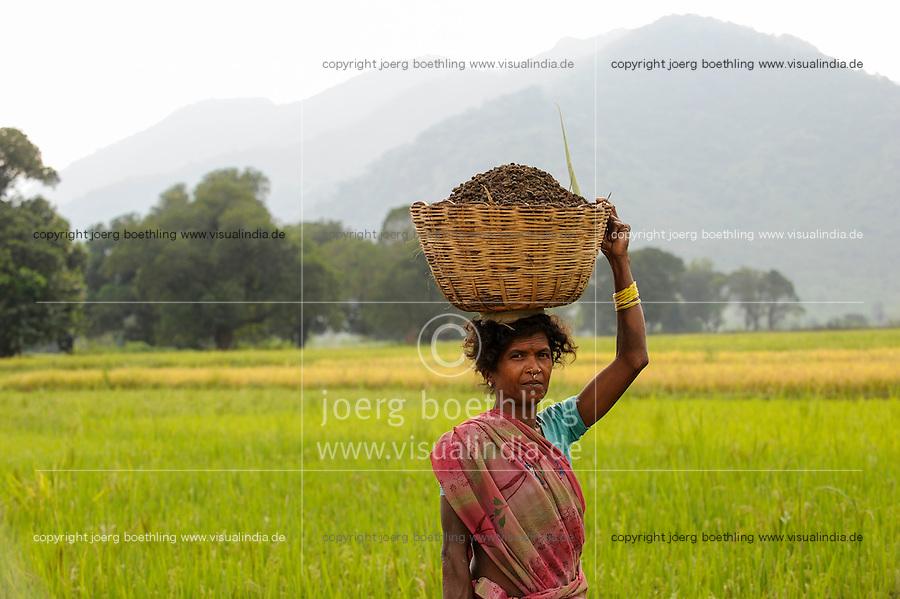 INDIA Odisha Orissa, Raygada, tribal village Bishnuguda, Dongria Kondh tribe, woman carry basket / INDIEN Odisha Orissa, Raygada, Dorf Bishnuguda, Ureinwohner Dongria Kondh, Frau traegt einen Korb