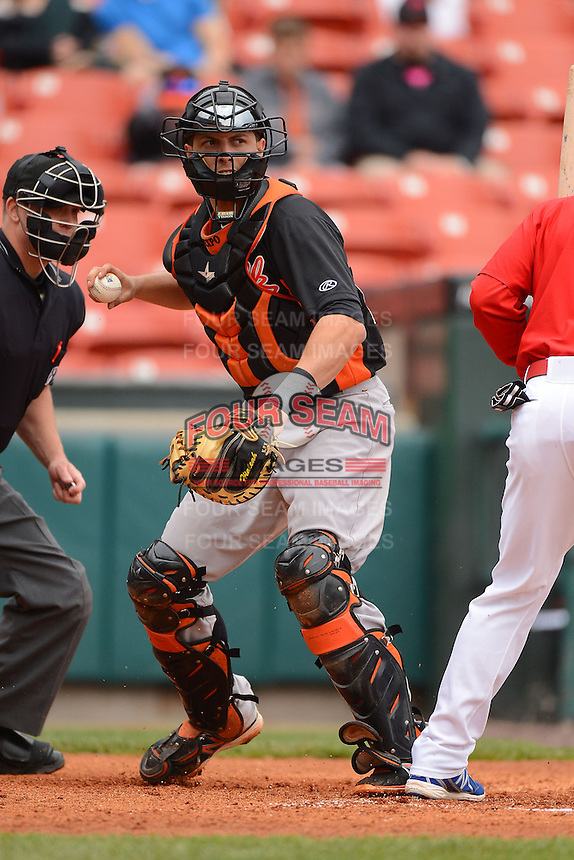 Norfolk Tides catcher Luis Exposito #23 fakes a throw to first during a game against the Buffalo Bisons on May 9, 2013 at Coca-Cola Field in Buffalo, New York.  Norfolk defeated Buffalo 7-1.  (Mike Janes/Four Seam Images)