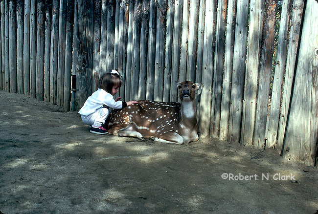 Girl at zoo squatting down and petting a spotted deer who is mugging for the camera