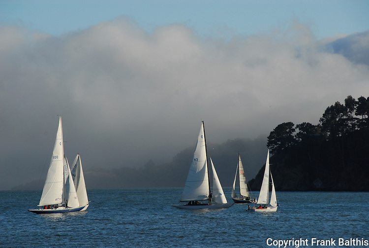 sailing near Tiburon