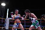 Cartelera boxística de la 96a Convención de la Asociación Mundial de Boxeo (AMB). Medellín, Colombia.