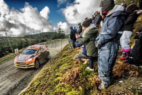 14.11.2015. Wales. WRC Rally of Great Britan. Stages 11-14, Wales.  <br /> Martin Prokop (CZE)and Jan Tomanek(CZE) - Ford Fiesta WRC