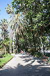 People walking along path through palm trees and botanical gardens, Malaga, Spain