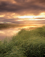 Fog and sunrise on Klamath Marsh. Oregon.