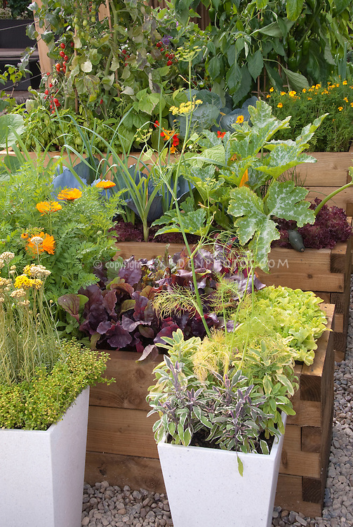 herbs vegetables flowers pots container garden raised beds mixed vegetable gardening ideas uk in the philippines small