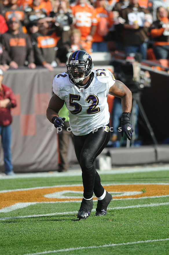 RAY LEWIS, of the Baltimore Ravens, in action against the Cleveland Browns during the Ravens game in Cleveland, Ohio on November 2, 2008. ..Ravens  win 37-27