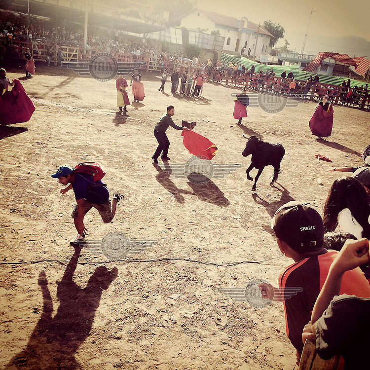 Members of the public jump into the ring to challenge the bulls during the fiestas of Tumbaco.