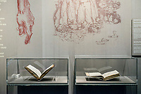 Leonardo da Vinci - Uffizi Gallery Exhibition
