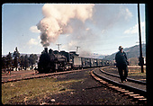 D&amp;RGW #493 K-37 hauling stock cars in possibly Alamosa or Chama. Man walking on track to right.<br /> D&amp;RGW  Alamosa ? Chama ?,