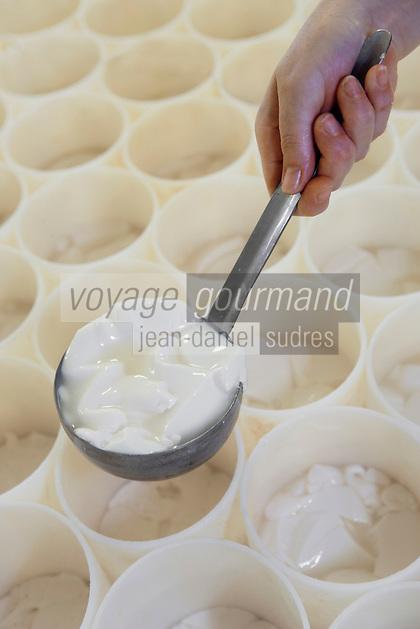 Europe/France/Normandie/Basse-Normandie/14/Calvados/Pays d'Auge /Saint Loup-de-Fribois: Camembert au lait cru moulé à la louche de la fromagerie du village -moulage manuel à la louche