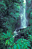 Beautiful waterfall found in the heart of Hana, Maui