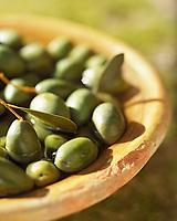 Europe/France/Provence-Alpes-Côte- d'Azur/84/Vaucluse/Avignon: olives Picholines