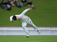 Wellington's Michael Bracewell fields on day one of the Plunket Shield cricket match between the Wellington Firebirds and Otago Volts at Basin Reserve in Wellington, New Zealand on Monday, 21 October 2019. Photo: Dave Lintott / lintottphoto.co.nz