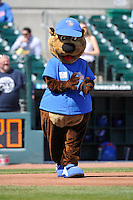 Cubbie Bear, the Iowa Cubs mascot, jogs around the bases prior to the game against the Iowa Cubs at Principal Park on April 14, 2016 in Des Moines, Iowa.  The Cubs won 4-2 .  (Dennis Hubbard/Four Seam Images)