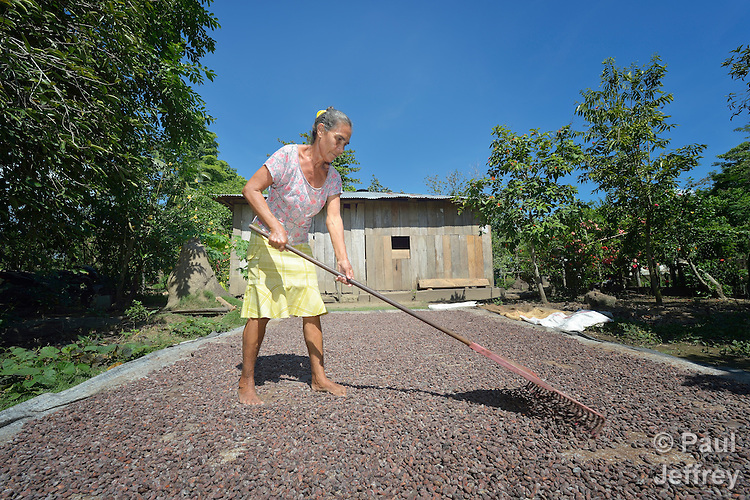 Doris Maria Trillos rakes cacao drying in the sun outside her home in Garzal, Colombia. People in this community have struggled for years to stay on their land, despite threats and violence from drug traffickers and paramilitaries.