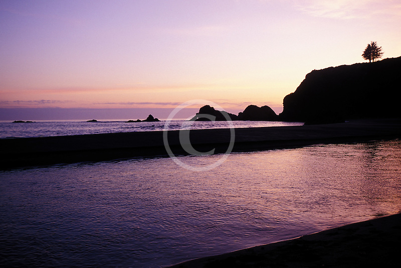 California, Mendocino County, Navarro River Redwoods State Park, Beach at sunset