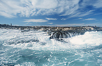 Seal Island, False Bay, South Africa.