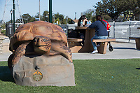A family picnics at a table behind a turtle play structure.
