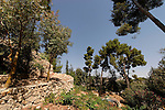 Israel, the Upper Galilee. The Citadel Garden in Safed