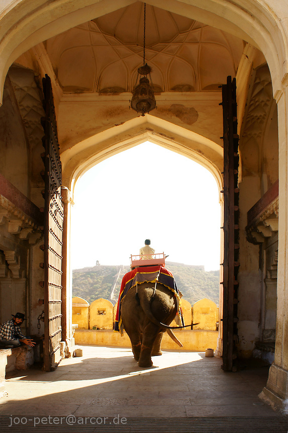 elephant and guide passing big gate of Amber Fort near Jaipur, Rajastan