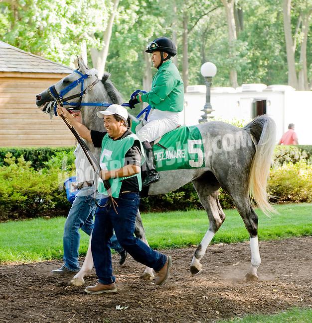 Vazs Mane Son before The Alec Courtelis Juvenile Arabian Stakes at Delaware Park on 7/9/12