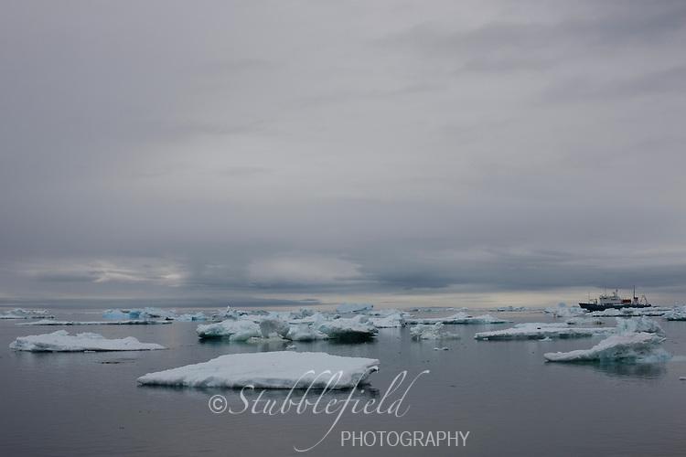 Ice floes off Paulet Island, Antarctica.