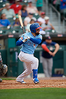 Buffalo Bisons Michael De La Cruz (55) at bat during an International League game against the Pawtucket Red Sox on August 25, 2019 at Sahlen Field in Buffalo, New York.  Buffalo defeated Pawtucket 5-4 in 11 innings.  (Mike Janes/Four Seam Images)