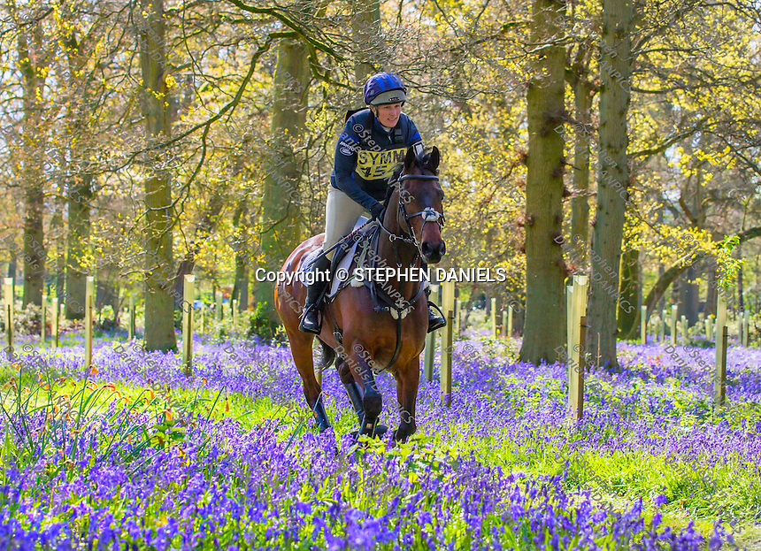 Photo by © Stephen Daniels <br /> Rider riding though Bluebell Woods at Hambleden One Day Event, Oxon.
