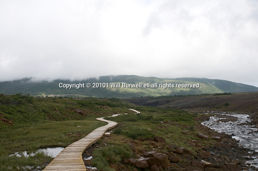 Boardwalk Tablelands Trail with fog, clouds, rain and sunshine