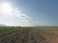 AG_LOCATION_65050