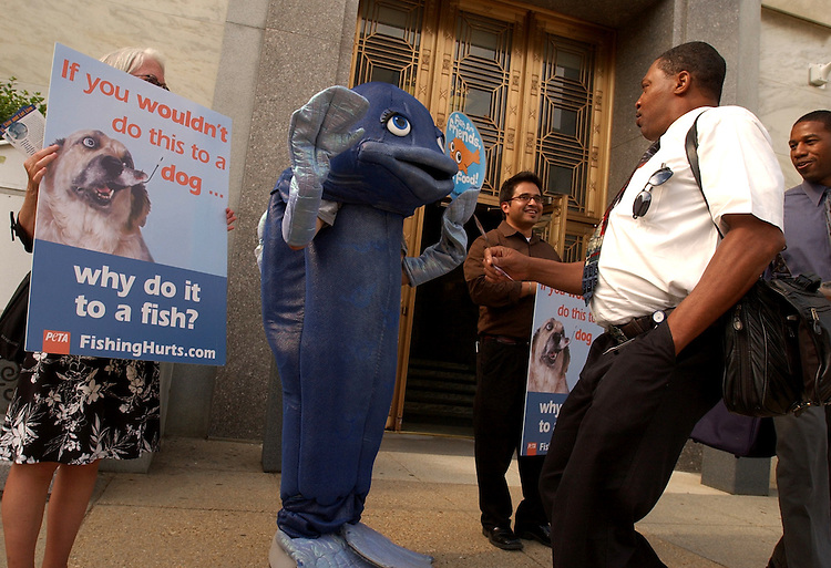 "Alex James and Shelvin Simmons, far right, react to a man in a fish suit will leaving work in Dirksen Building.  People for the Ethical Treatment of Animals (PETA) was holding a small protest in outside the American Sportfishing Association awards ceremony.  The action was part of PETA's ""Fish Empathy Project,"" which aims to let anglers know that fish also feel pain."