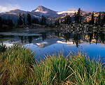 Wallowa-Whitman National Forest  <br /> Morning light on Eagle Cap peak with reflections from the grassy shore of Sunshine Lake, in the Lake Basin of the Eagle Cap Wilderness