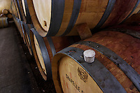 Oak barrels with aging wines. The white plug place marker on the edge of the barrel indicates that a sample has been taken from this barrel and it should be topped up, Maison Louis Jadot, Beaune Côte Cote d Or Bourgogne Burgundy Burgundian France French Europe European