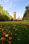 Autumn at the Houses of Parliament, Westminster, London, from Millbank