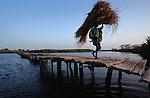 Senegal sine saloum