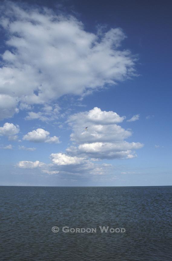 Puffy White Cumulus and Altocumulus Clouds Against Brilliant Blue Sky above Lake Erie - Vertical