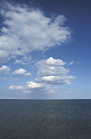 Puffy White Cumulus and Altocumulus Clouds Against Brilliant Blue Sky above Lake Erie - Vertical