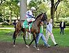 Isla before The Christiana Stakes at Delaware Park 9/15/12