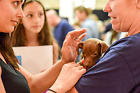 MANHATTAN ,NEW YORK, USA -JUNE 02:  Potential adopter at Best Friends Pet Super Adoption that held its annual adoption event bringing together more than twenty pet rescue organizations  and hundreds of dogs and cats into contact with people seeking to open their hearts & homes to an animal in need on June 2, 2017 in New York. Joana Toro/VIEW press