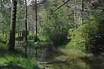 Hut in the forest next to stream, Ainsa district,Huesco, Arogon,Pyrenees Mountains, Spain