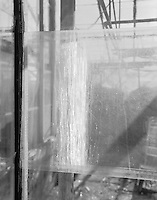 &quot;Single Glass Pane&quot; Gibson Greenhouses, Maryville, Tennessee<br />